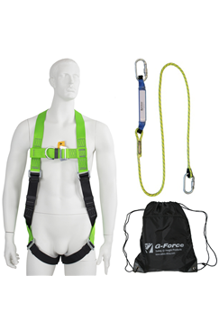 2-point Harness and Shock Absorbing Lanyard Kit