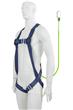 Access Platform Harness and Restraint Lanyard Kit