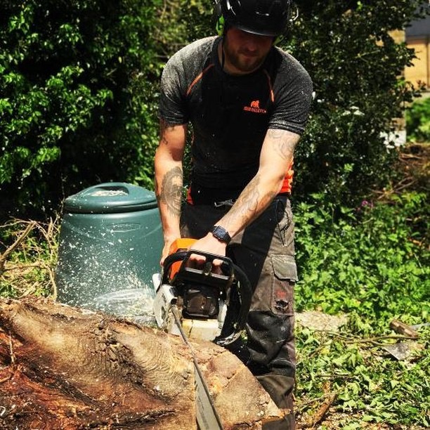 Cutting wood in Bear Valley shirt